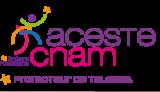 ACESTE CNAM Logo